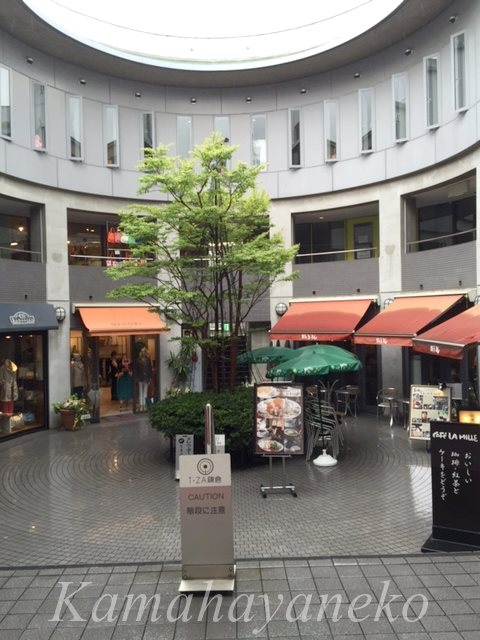 iza鎌倉5