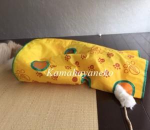 カシャカシャ猫3