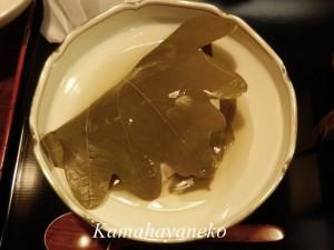 日陰茶屋10
