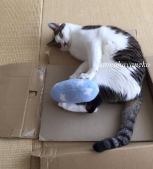 モフモフ枕9