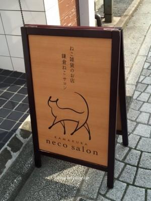 猫サロン1